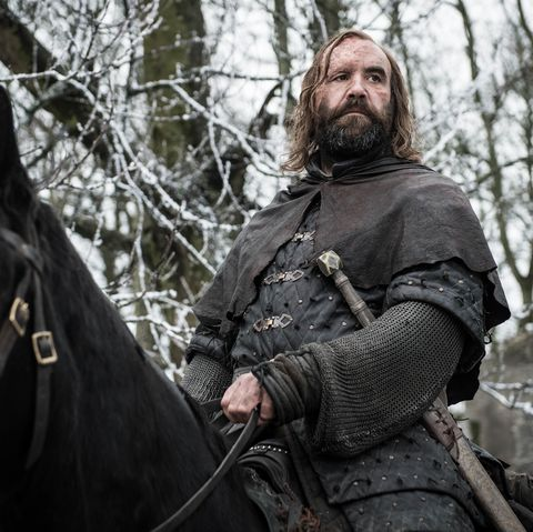 game-of-thrones-hound-1557418129.jpg